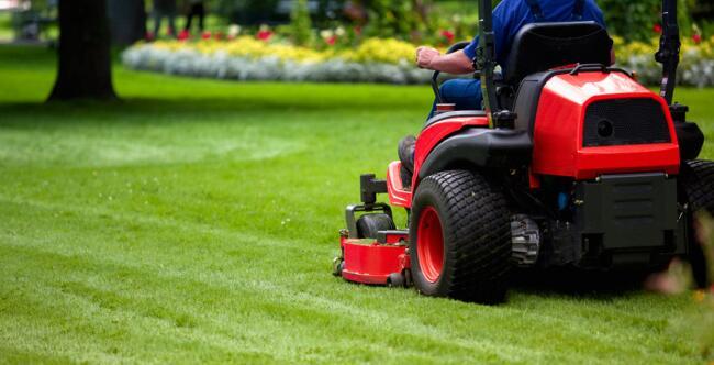 Colmo per un giardiniere for Donare un giardiniere